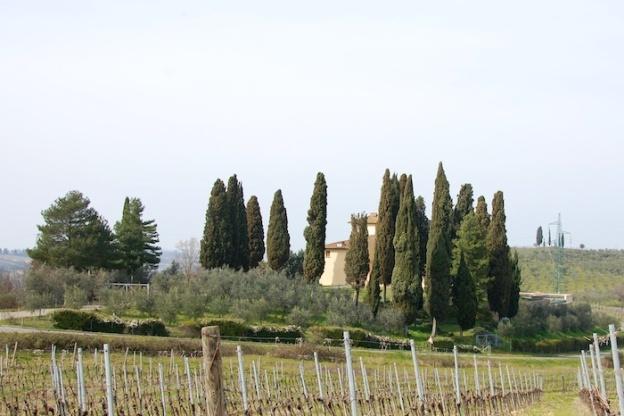 wandeling-toscane-maart2014-2