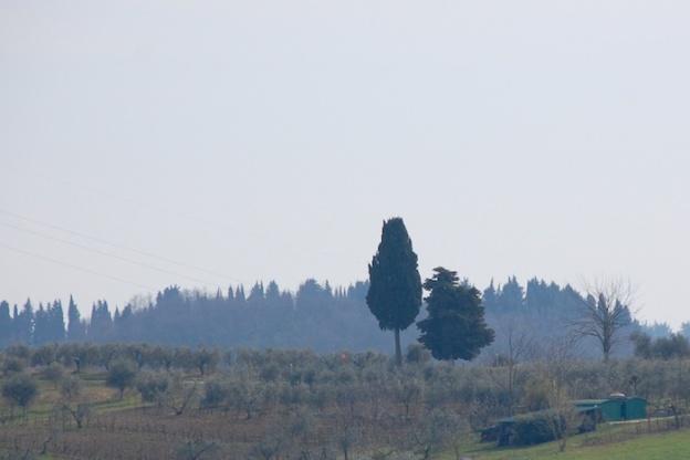 wandeling-toscane-maart2014-5
