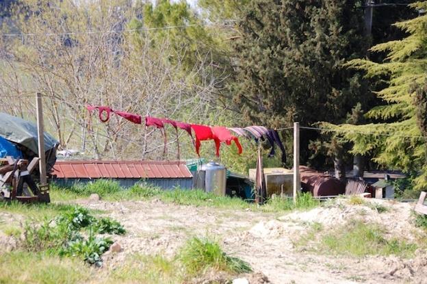 wandeling-toscane-30-maart-2014-4
