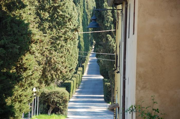 wandeling-toscane-30-maart-2014-7