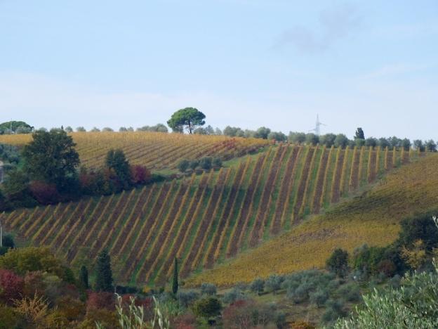 herfst-toscane-zonnig-1