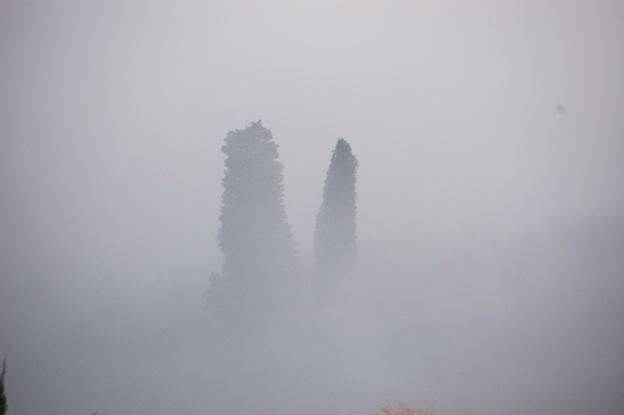 mistige-ochtend-toscane-3