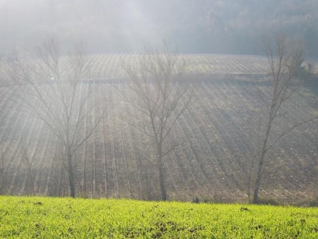 natuur-toscane-januari-1