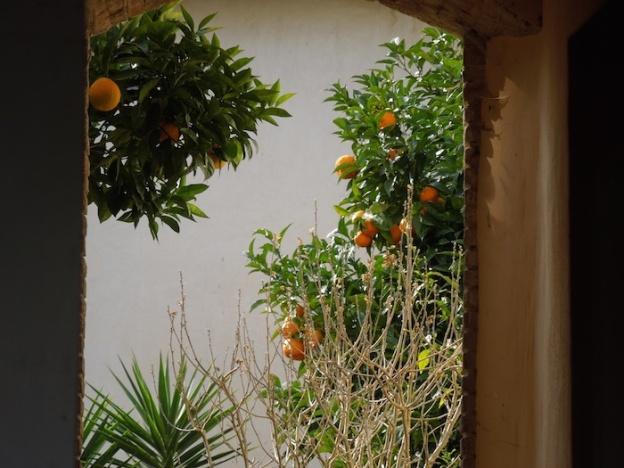 wandeling-toscane-villas-kastelen-2