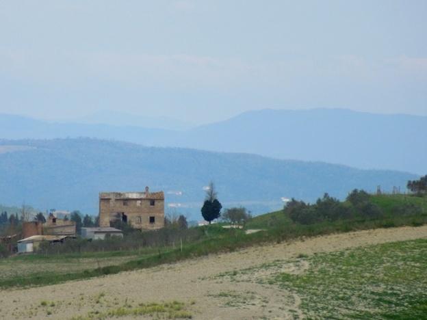 cipressen-toscane-1