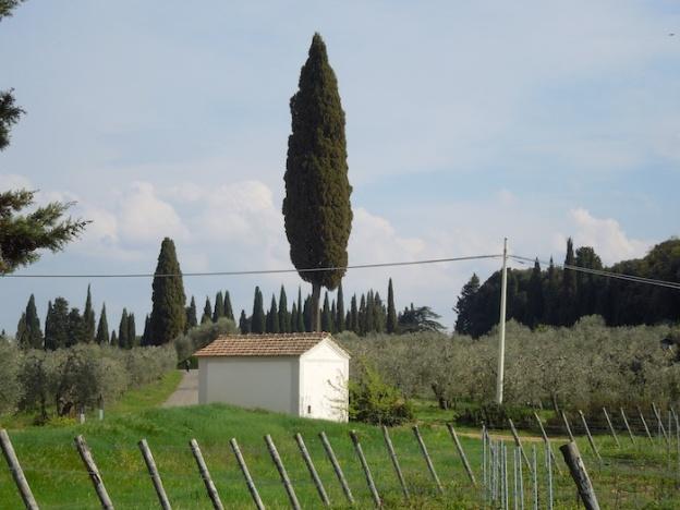 fietsen- voorjaar-toscane-5