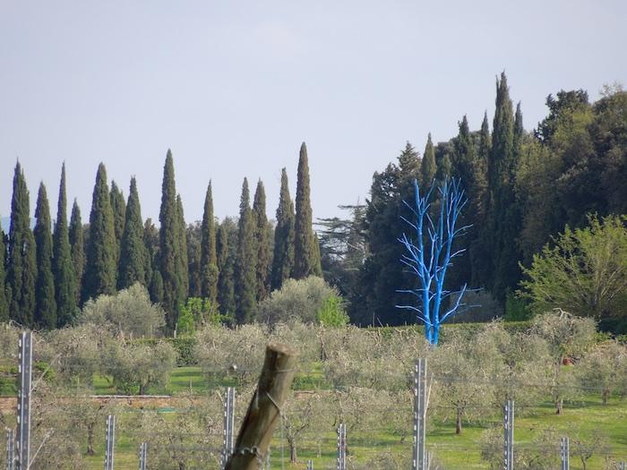 fietsen- voorjaar-toscane-6