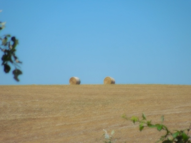 fietsroute-toscane-certaldo-montespertoli-3