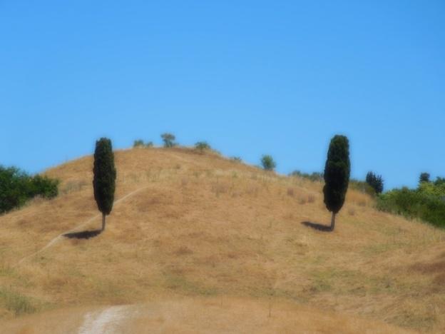 fietsroute-toscane-certaldo-montespertoli-5
