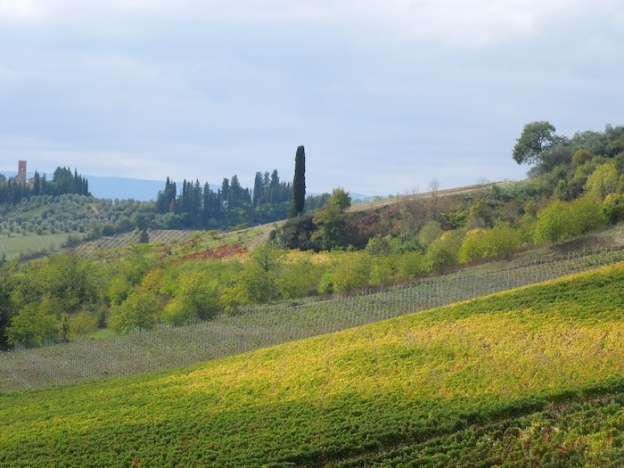 herfst-wijngaarden-toscane-3