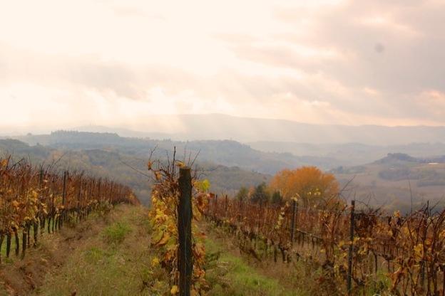 toscaanse-herfst- - 2