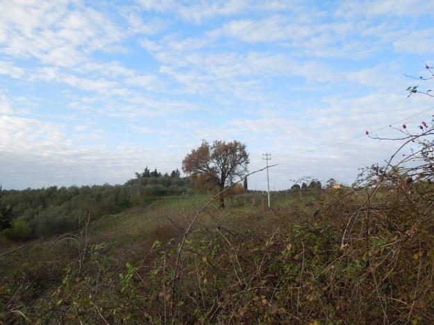 land-toscane